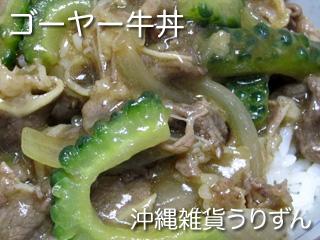 ゴーヤー牛丼