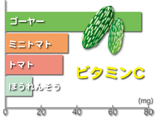 ゴーヤーのビタミンC含有量