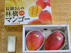 長嶺さんのアップルマンゴー