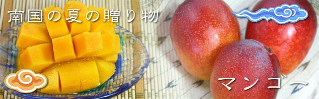 沖縄県産マンゴーをご家庭に直送