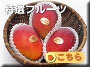 贈答用フルーツ