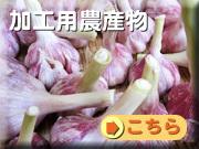 業務用沖縄野菜