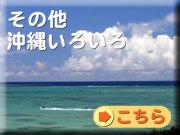 その他沖縄いろいろ