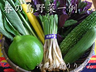 沖縄,島野菜,春野菜,セット