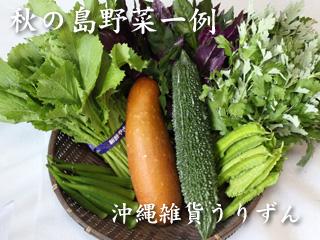 沖縄,野菜,秋