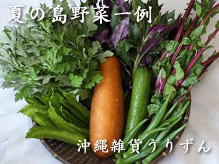 夏の主な島野菜