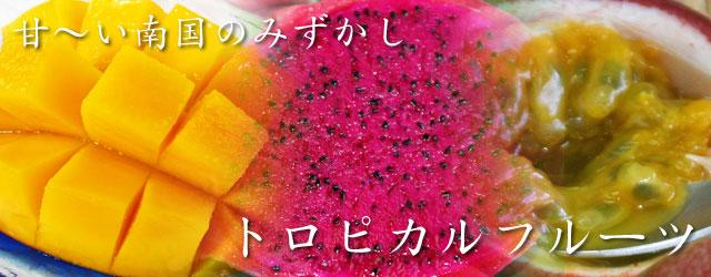 沖縄のトロピカルフルーツを販売