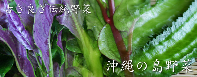 沖縄,島野菜,伝統野菜
